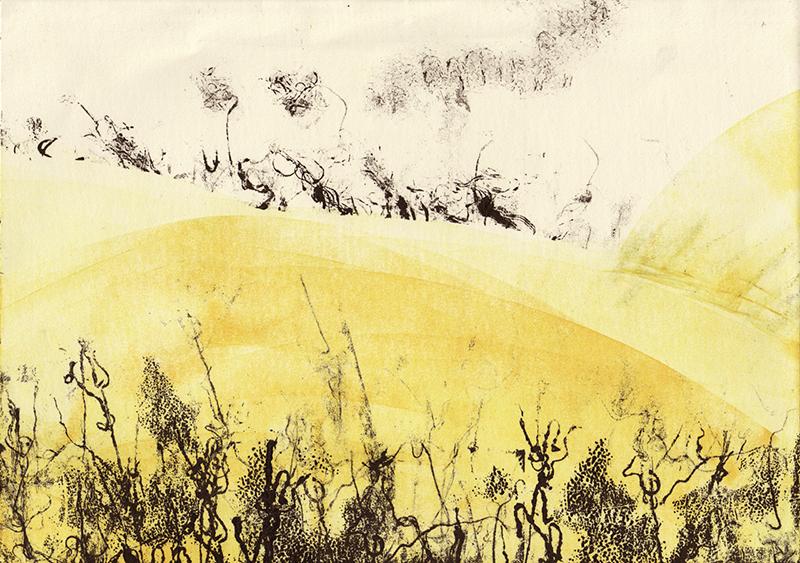 Florencia Lastreto - Nuevo trigo
