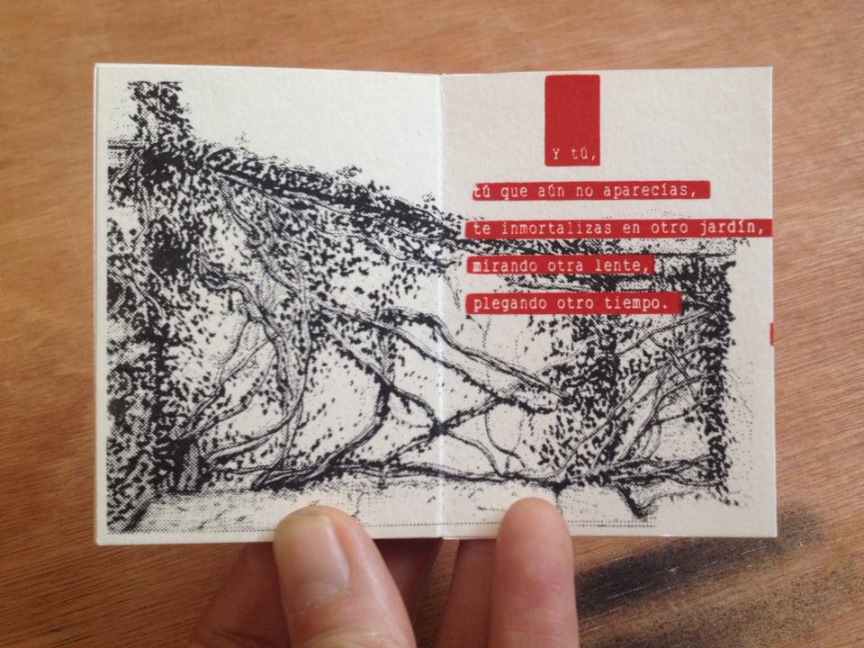 "Florencia Lastreto - ""Una Foto"" poema ilustrado"
